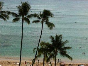 Honolulu -2