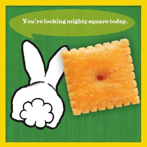cheddar squares