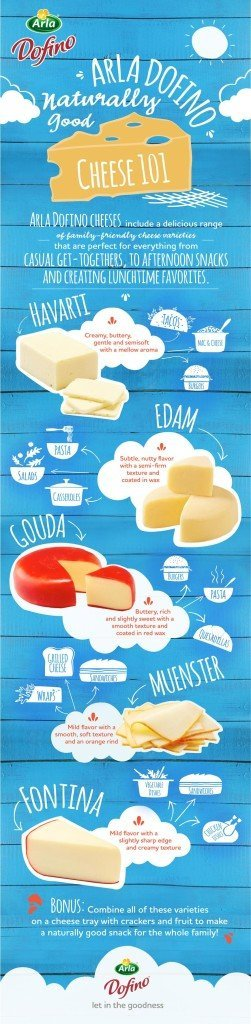 Arla Dofino Cheese 101 Infographic copy
