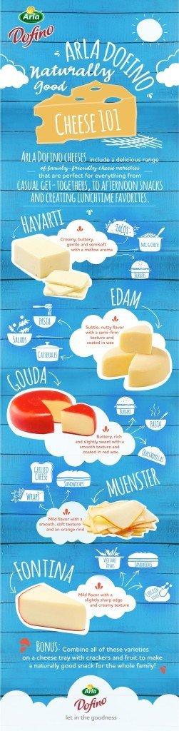 Arla Dofino Cheese 101 Infographic copy