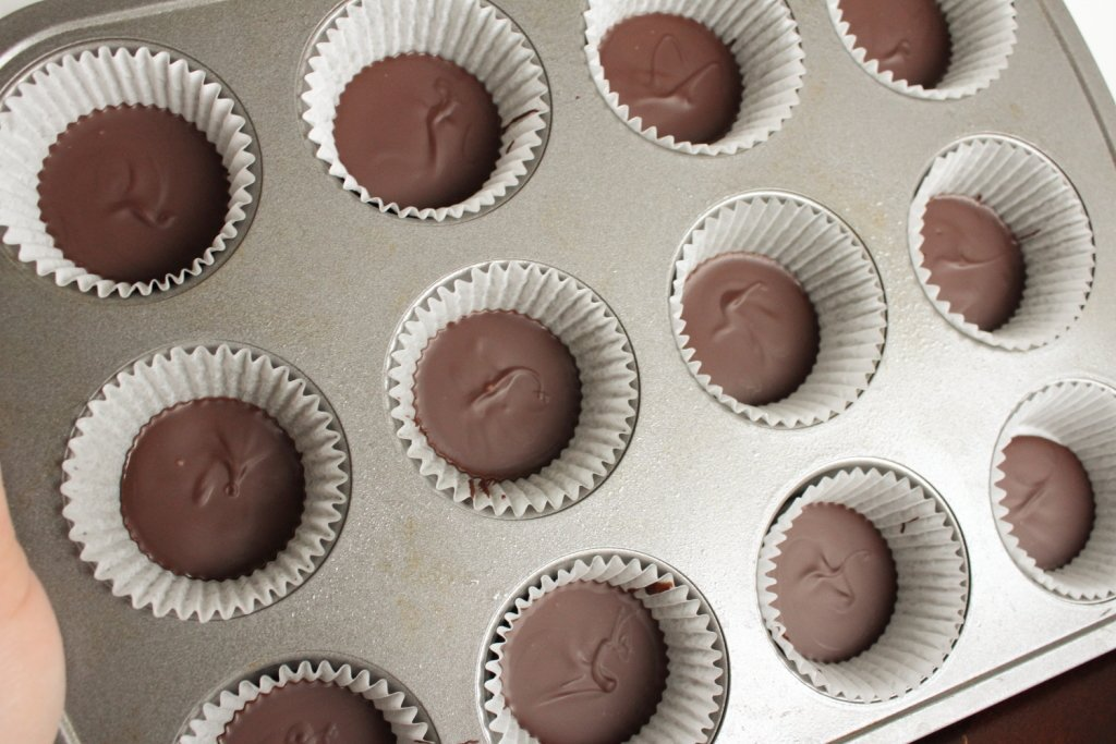 pb cup in process 2