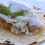 Favorite Fish Tacos