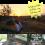 Camping Tips2