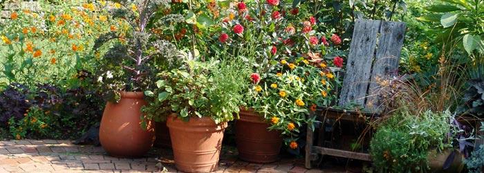 scott arboretum gardens