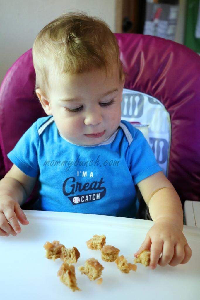 gerber-baby-breakfast-bits