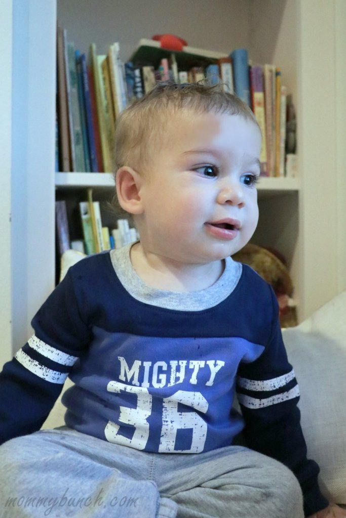 carters-fall-line-mighty