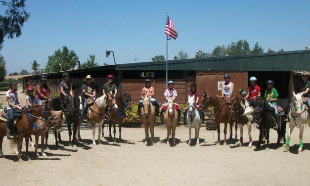 Take a Family Road Trip To Horsetown USA