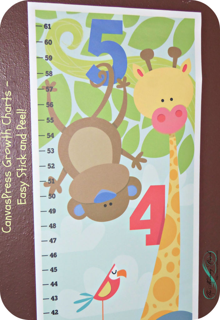 Designer Canvas Growth Charts – For the kid in all of us!