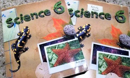 6th Grade Science Curriculum – BJU Press Review
