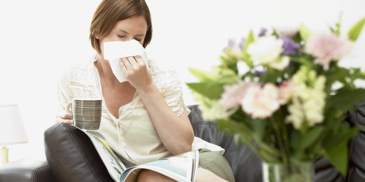 How to Easily Reduce the Effects of Seasonal Allergies