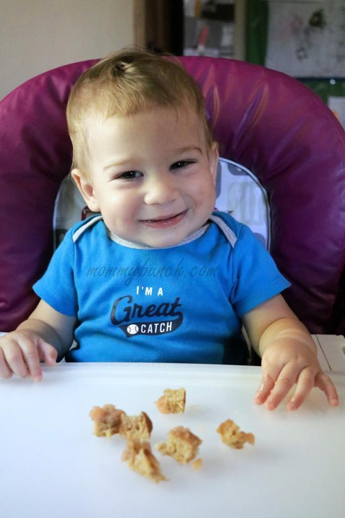 breakfast-bits-gerber-baby