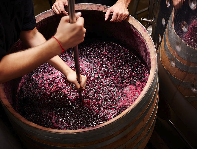 Six Fabulous Wine Tours On Long Island